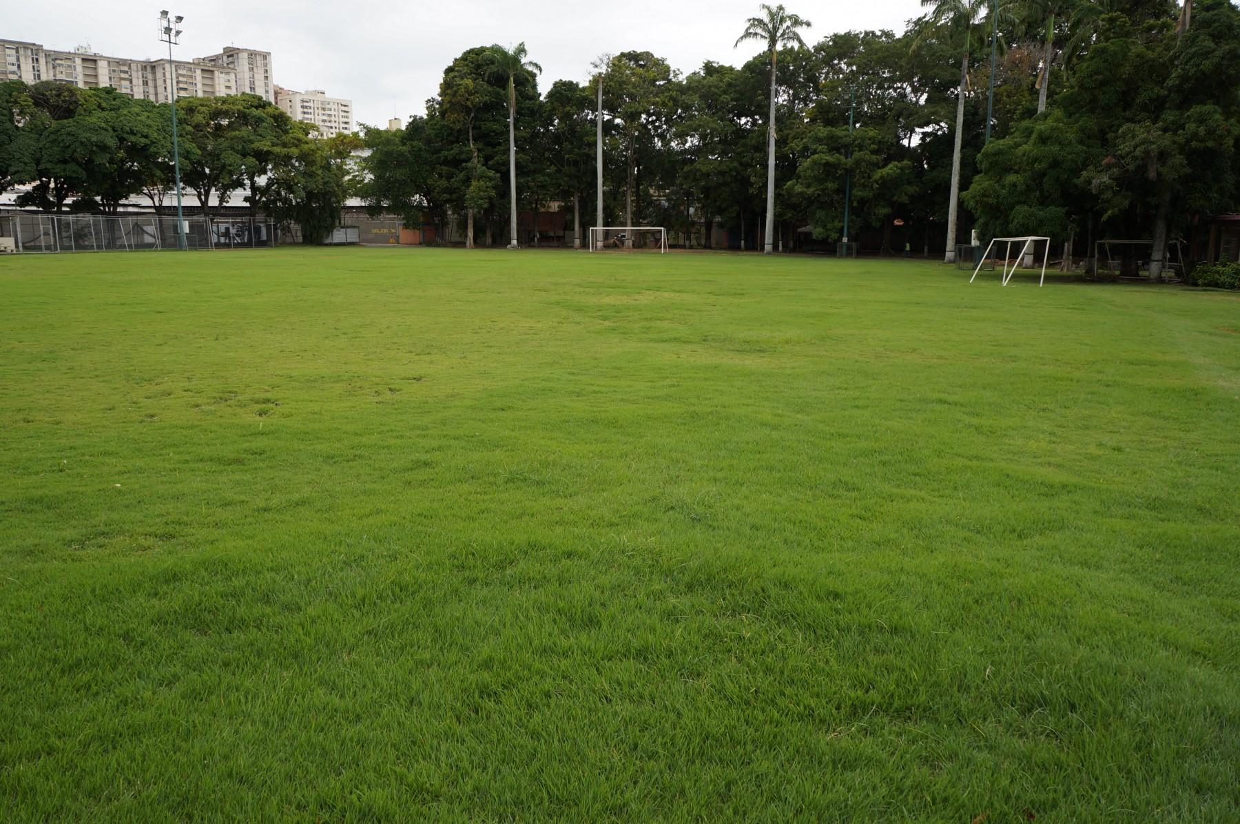 Campo-deportivo